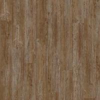 Moduleo Latin Pine 24852 Transform